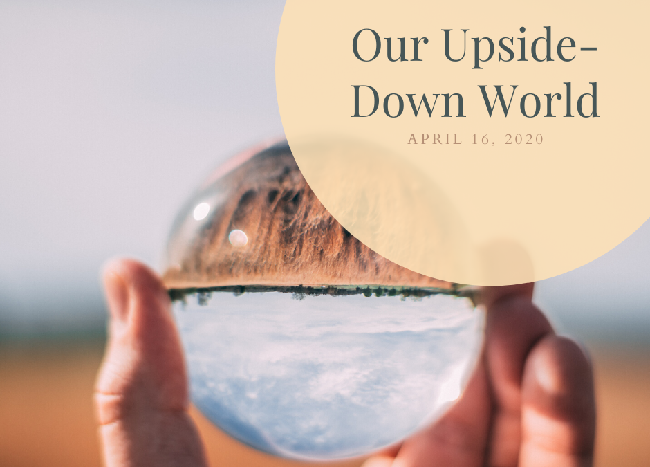Our Upside-Down World